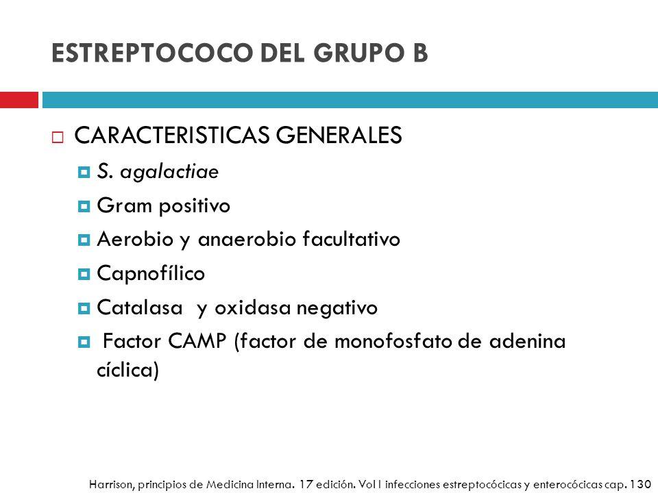 ESTREPTOCOCO DEL GRUPO B CARACTERISTICAS GENERALES S. agalactiae Gram positivo Aerobio y anaerobio facultativo Capnofílico Catalasa y oxidasa negativo