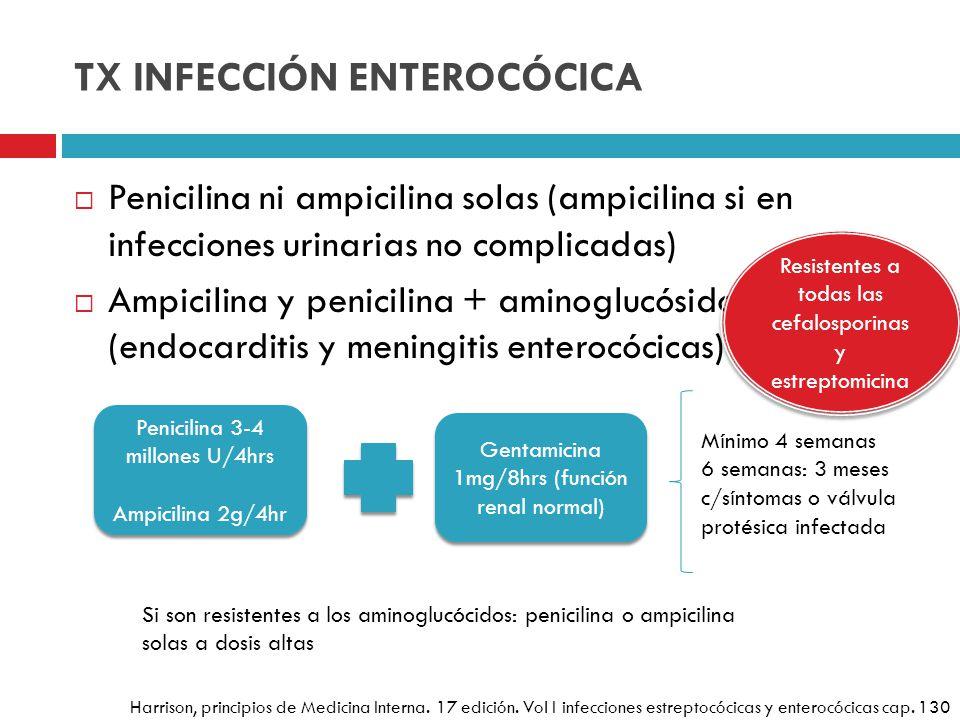 TX INFECCIÓN ENTEROCÓCICA Penicilina ni ampicilina solas (ampicilina si en infecciones urinarias no complicadas) Ampicilina y penicilina + aminoglucós