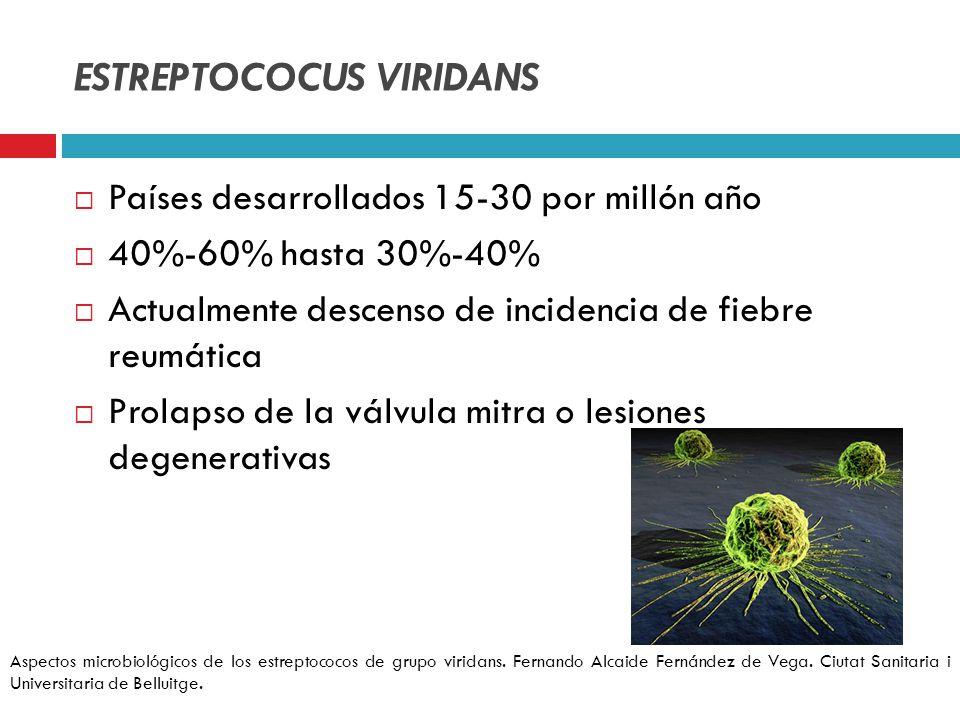ESTREPTOCOCUS VIRIDANS Países desarrollados 15-30 por millón año 40%-60% hasta 30%-40% Actualmente descenso de incidencia de fiebre reumática Prolapso