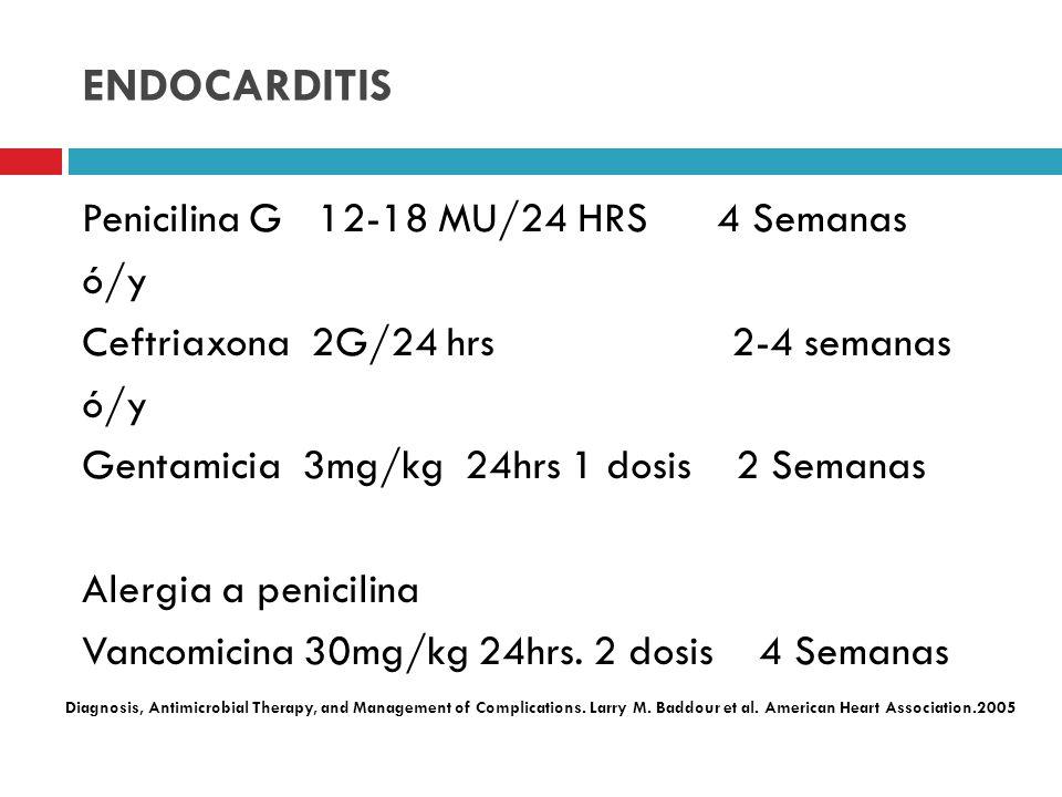 ENDOCARDITIS Penicilina G 12-18 MU/24 HRS 4 Semanas ó/y Ceftriaxona 2G/24 hrs 2-4 semanas ó/y Gentamicia 3mg/kg 24hrs 1 dosis 2 Semanas Alergia a peni