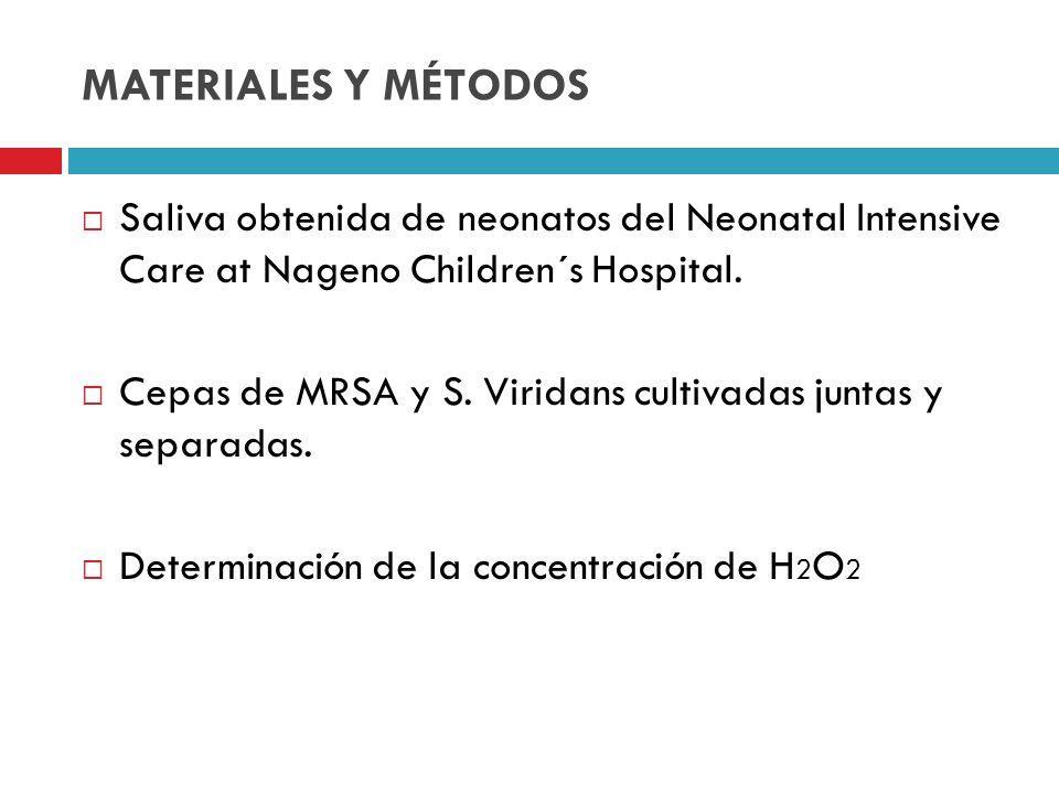 MATERIALES Y MÉTODOS Saliva obtenida de neonatos del Neonatal Intensive Care at Nageno Children´s Hospital. Cepas de MRSA y S. Viridans cultivadas jun