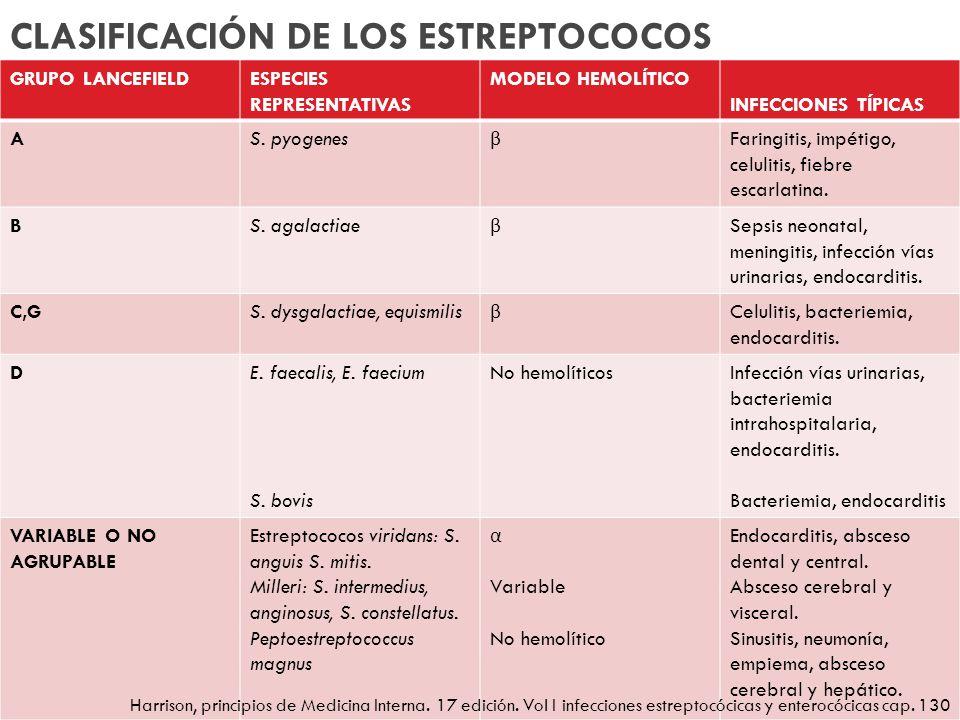 CLASIFICACIÓN DE LOS ESTREPTOCOCOS GRUPO LANCEFIELDESPECIES REPRESENTATIVAS MODELO HEMOLÍTICO INFECCIONES TÍPICAS AS. pyogenes β Faringitis, impétigo,