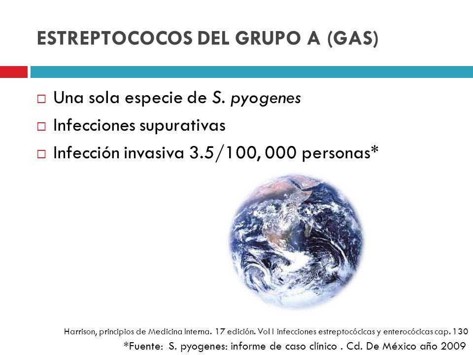 ESTREPTOCOCOS DEL GRUPO A (GAS) Una sola especie de S. pyogenes Infecciones supurativas Infección invasiva 3.5/100, 000 personas* *Fuente: S. pyogenes