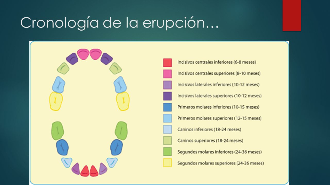Cronología de la erupción…