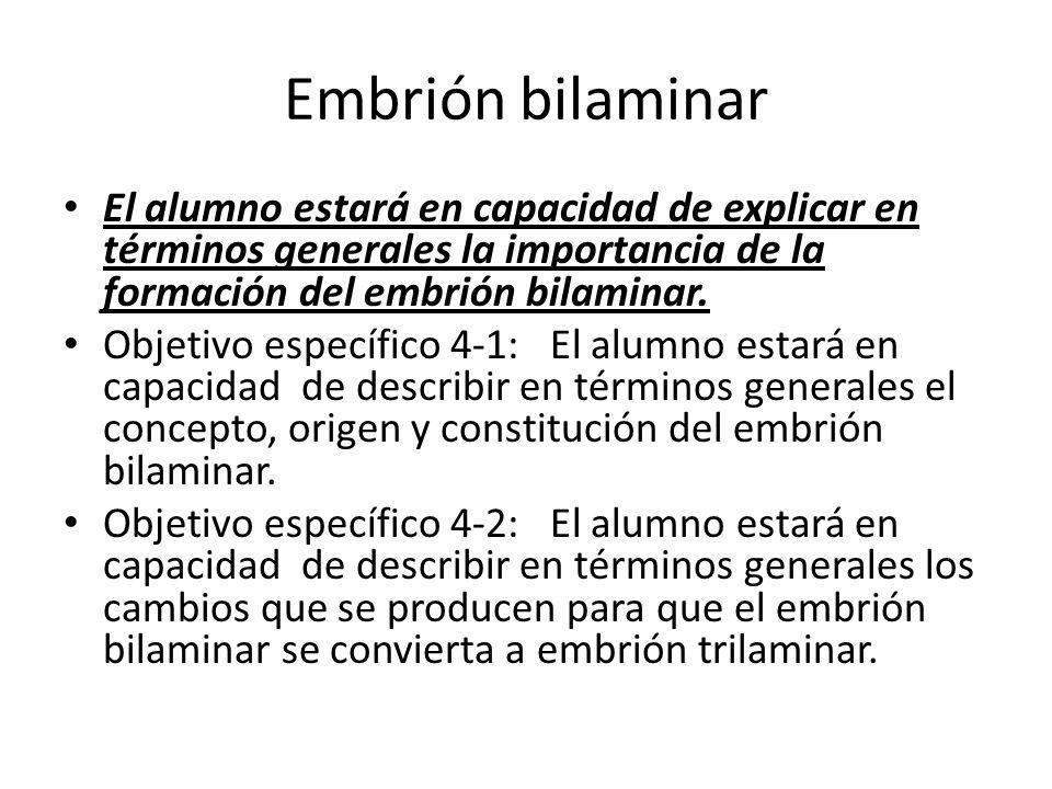 Embrión bilaminar El alumno estará en capacidad de explicar en términos generales la importancia de la formación del embrión bilaminar. Objetivo espec