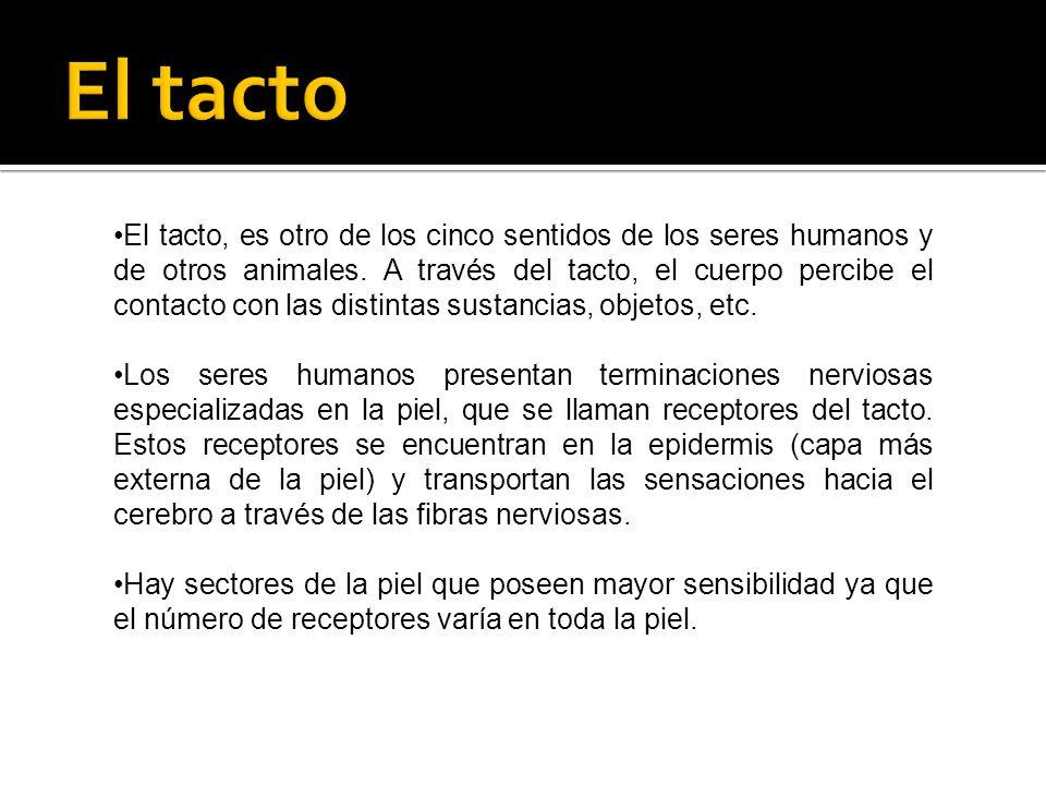 El tacto, es otro de los cinco sentidos de los seres humanos y de otros animales. A través del tacto, el cuerpo percibe el contacto con las distintas