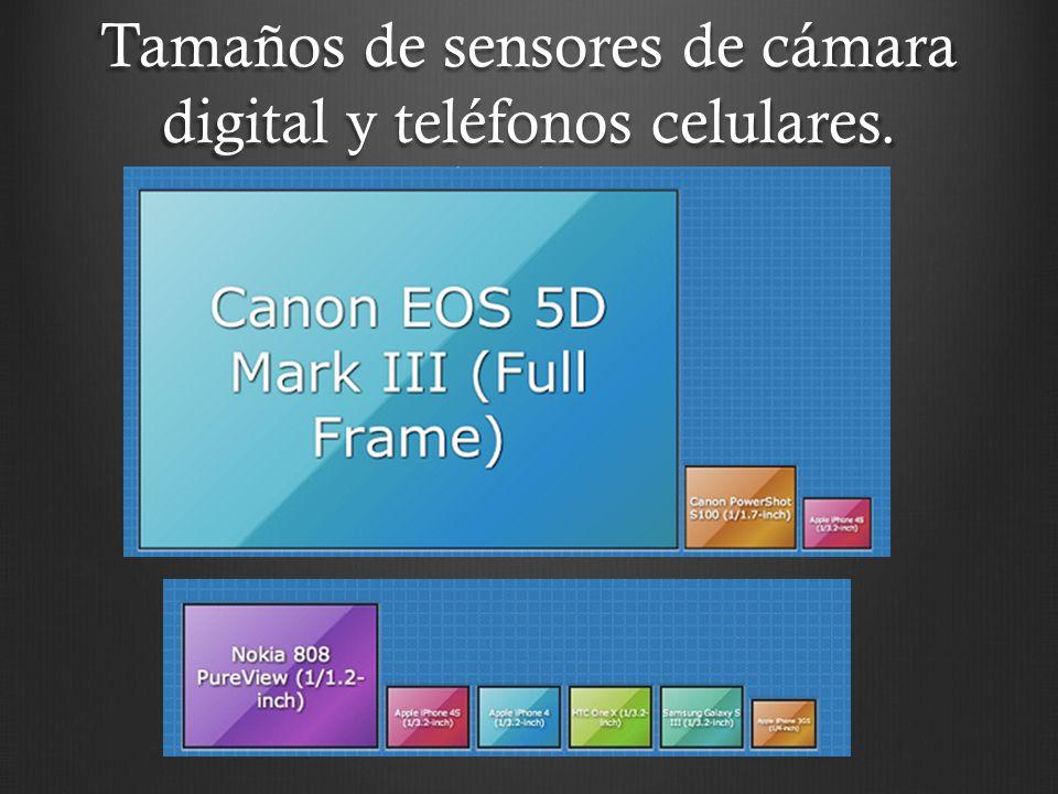 Tamaños de sensores de cámara digital y teléfonos celulares.