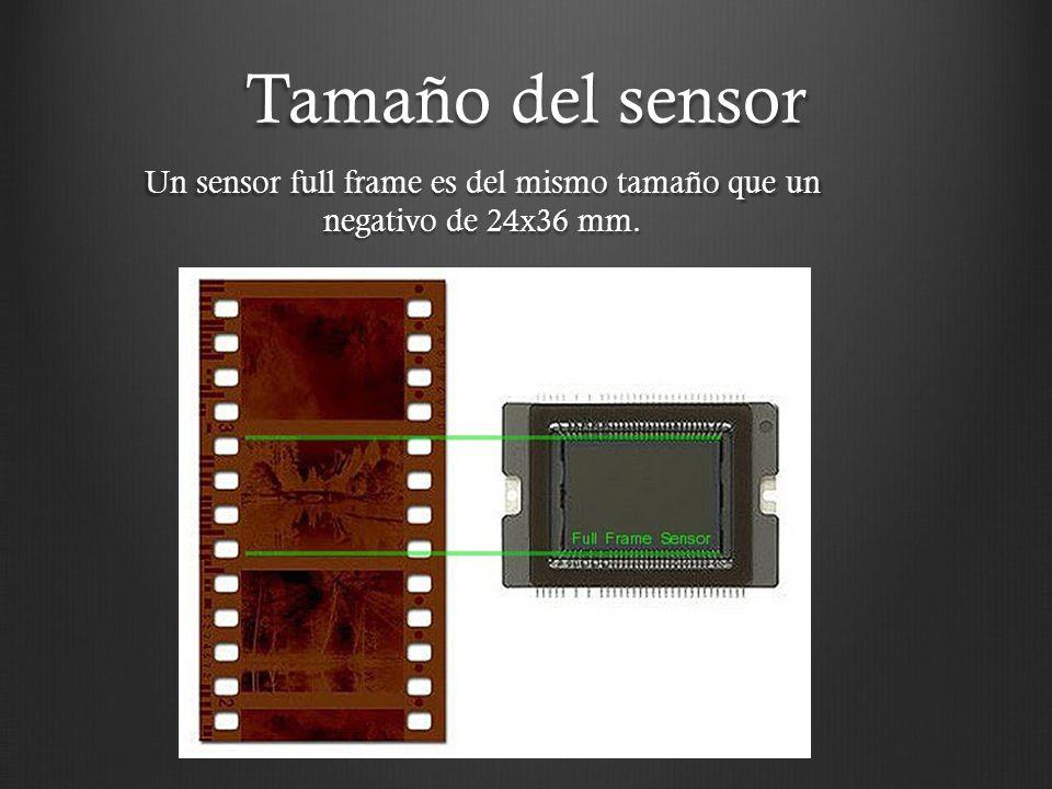 Tamaño del sensor Un sensor full frame es del mismo tamaño que un negativo de 24x36 mm.
