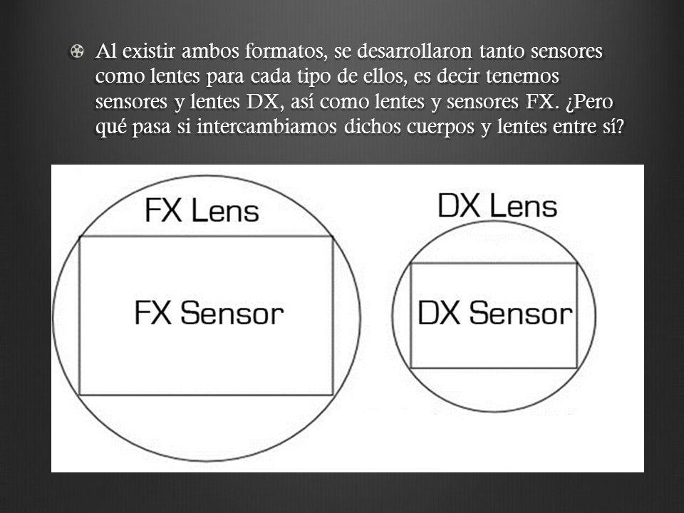 Al existir ambos formatos, se desarrollaron tanto sensores como lentes para cada tipo de ellos, es decir tenemos sensores y lentes DX, así como lentes