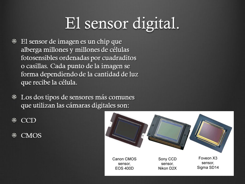 El sensor digital. El sensor de imagen es un chip que alberga millones y millones de células fotosensibles ordenadas por cuadraditos o casillas. Cada