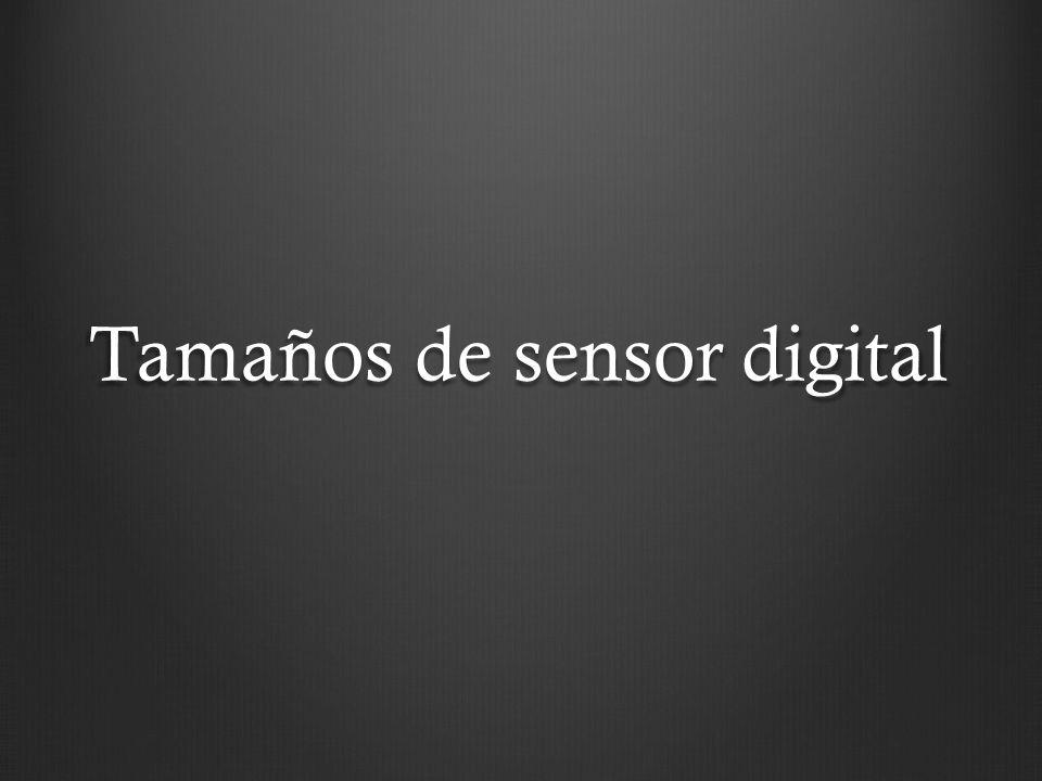 Tamaños de sensores