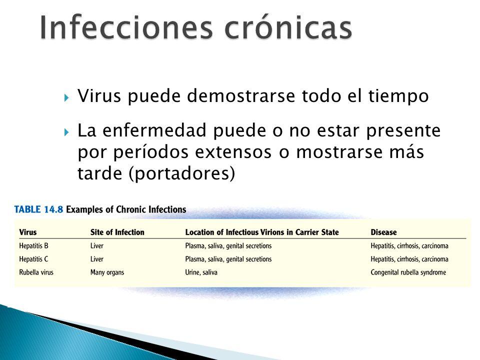 Virus puede demostrarse todo el tiempo La enfermedad puede o no estar presente por períodos extensos o mostrarse más tarde (portadores)