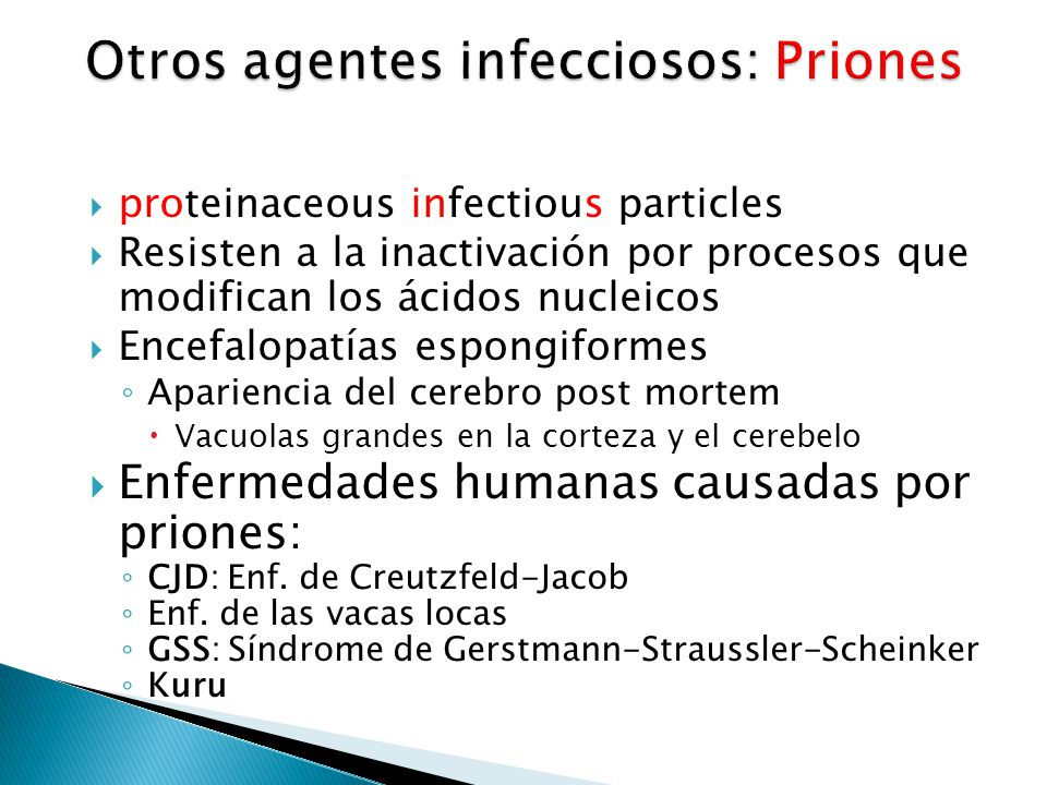proteinaceous infectious particles Resisten a la inactivación por procesos que modifican los ácidos nucleicos Encefalopatías espongiformes Apariencia