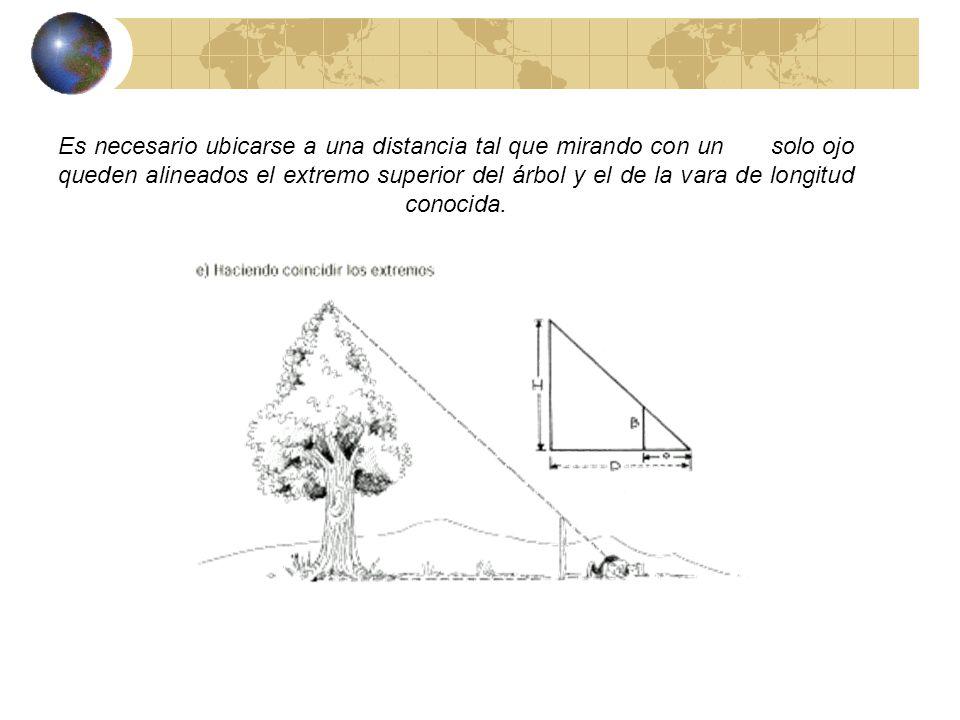 Para una misma hora la razón entre la longitud de un objeto y de su sombra es la misma.