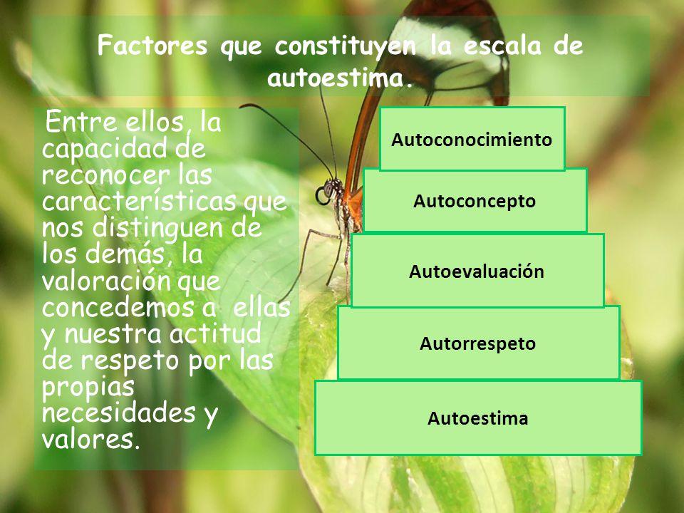 Factores que constituyen la escala de autoestima.