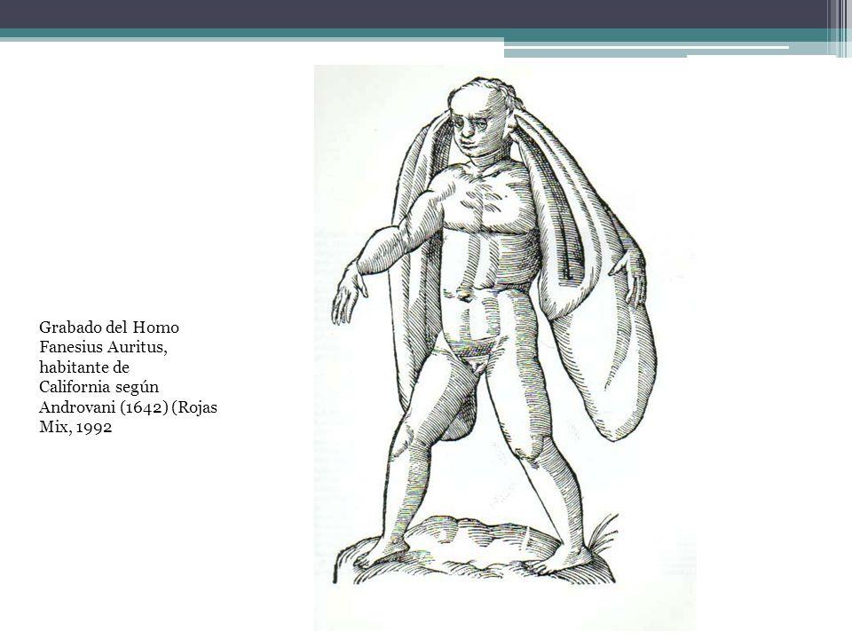 Grabado del Homo Fanesius Auritus, habitante de California según Androvani (1642) (Rojas Mix, 1992