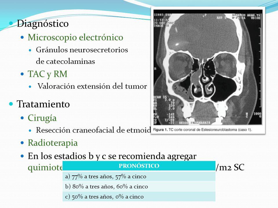 Diagnóstico Microscopio electrónico Gránulos neurosecretorios de catecolaminas TAC y RM Valoración extensión del tumor Tratamiento Cirugía Resección craneofacial de etmoides Radioterapia En los estadios b y c se recomienda agregar quimioterapia a base de ciclofosfamida 650 mg/m2 SC PRONÓSTICO a) 77% a tres años, 57% a cinco b) 80% a tres años, 60% a cinco c) 50% a tres años, 0% a cinco