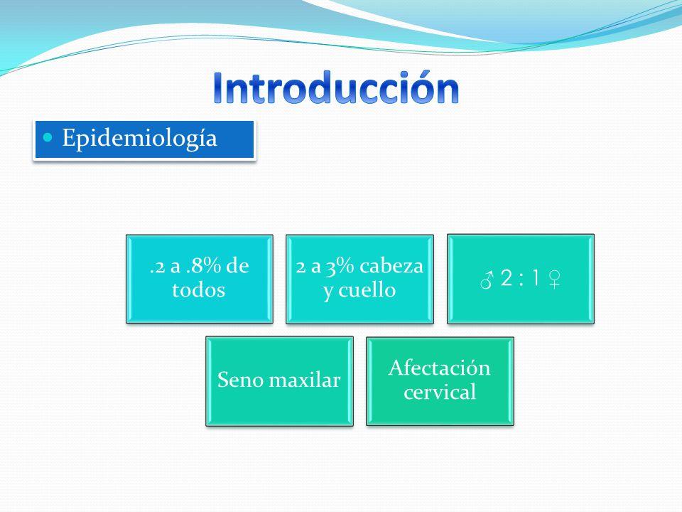 Tumores malignas de origen epitelial-glandular (ectodermo) Carcinoma epidermoide: Cáncer con > freq afectando tracto naso-sinusal (> 75% en zona) C/afectación tanto Nariz (20%) Como Senos Maxilar (70%) o etmoidal Teoría > aceptada ref.