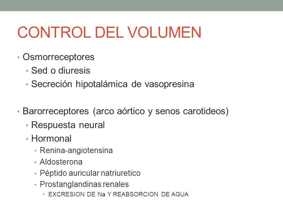 CONTROL DEL VOLUMEN Osmorreceptores Sed o diuresis Secreción hipotalámica de vasopresina Barorreceptores (arco aórtico y senos carotideos) Respuesta n