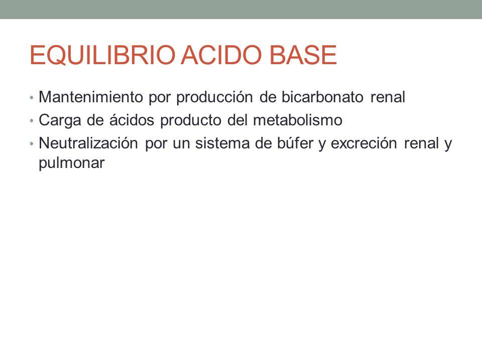 EQUILIBRIO ACIDO BASE Mantenimiento por producción de bicarbonato renal Carga de ácidos producto del metabolismo Neutralización por un sistema de búfe