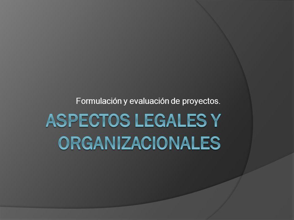 Formulación y evaluación de proyectos.