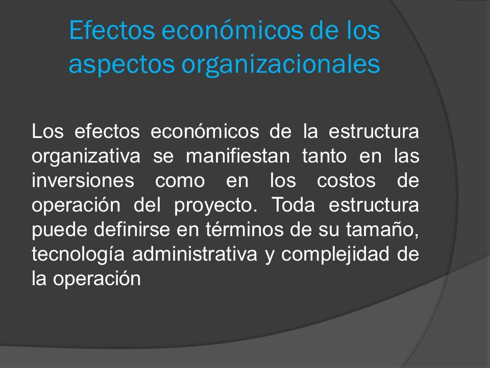 Efectos económicos de los aspectos organizacionales Los efectos económicos de la estructura organizativa se manifiestan tanto en las inversiones como