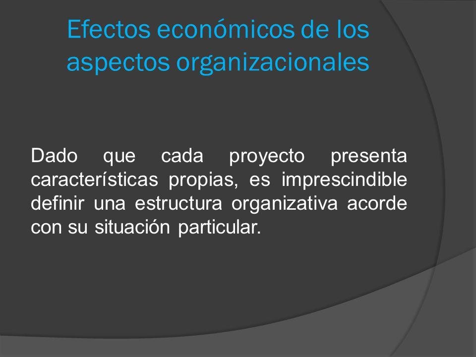 Efectos económicos de los aspectos organizacionales Dado que cada proyecto presenta características propias, es imprescindible definir una estructura