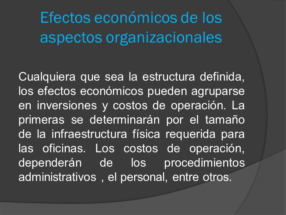 Efectos económicos de los aspectos organizacionales Cualquiera que sea la estructura definida, los efectos económicos pueden agruparse en inversiones