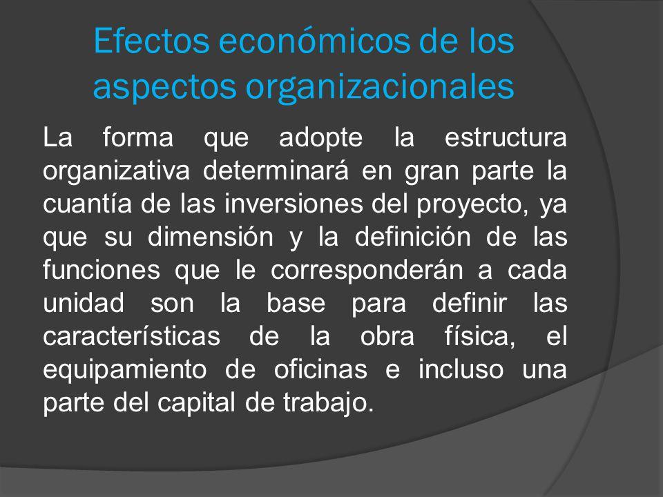 Efectos económicos de los aspectos organizacionales La forma que adopte la estructura organizativa determinará en gran parte la cuantía de las inversi