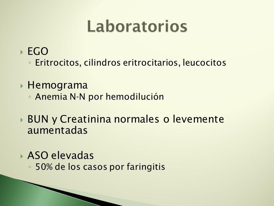 EGO Eritrocitos, cilindros eritrocitarios, leucocitos Hemograma Anemia N-N por hemodilución BUN y Creatinina normales o levemente aumentadas ASO eleva