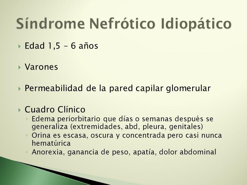 Edad 1,5 – 6 años Varones Permeabilidad de la pared capilar glomerular Cuadro Clínico Edema periorbitario que días o semanas después se generaliza (ex