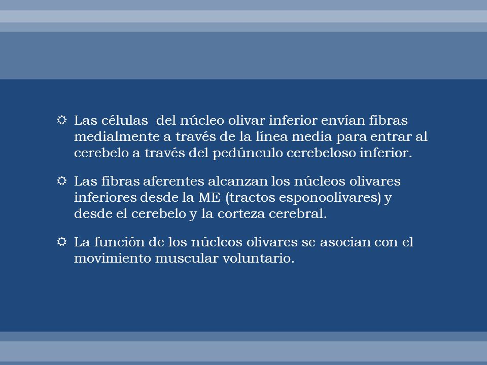 Las células del núcleo olivar inferior envían fibras medialmente a través de la línea media para entrar al cerebelo a través del pedúnculo cerebeloso