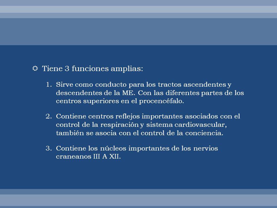 Tiene 3 funciones amplias: 1.Sirve como conducto para los tractos ascendentes y descendentes de la ME. Con las diferentes partes de los centros superi