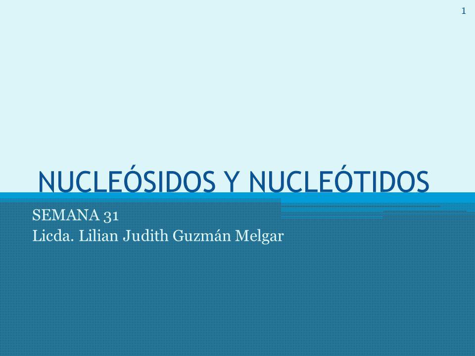 NUCLEÓSIDOS Y NUCLEÓTIDOS SEMANA 31 Licda. Lilian Judith Guzmán Melgar 1
