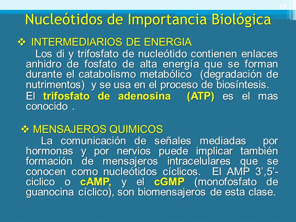 Nucleótidos de Importancia Biológica INTERMEDIARIOS DE ENERGIA INTERMEDIARIOS DE ENERGIA Los di y trifosfato de nucleótido contienen enlaces anhidro d