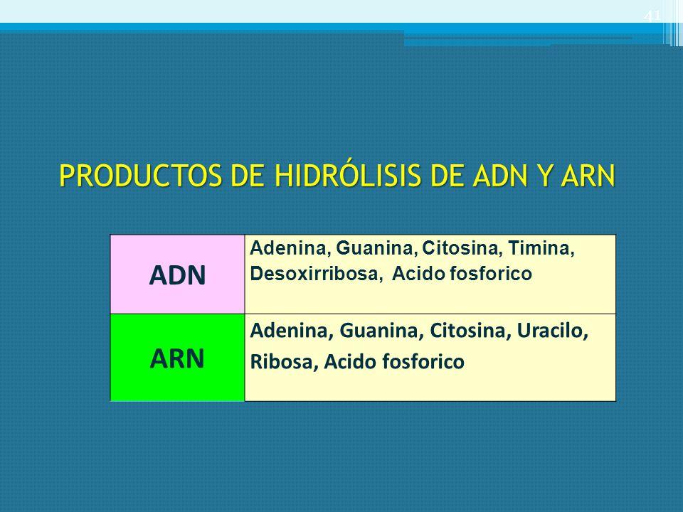 PRODUCTOS DE HIDRÓLISIS DE ADN Y ARN ADN Adenina, Guanina, Citosina, Timina, Desoxirribosa, Acido fosforico ARN Adenina, Guanina, Citosina, Uracilo, R