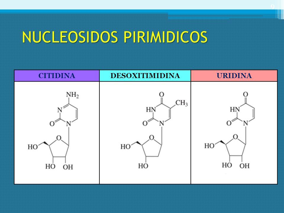 NUCLEOSIDOS PIRIMIDICOS NUCLEOSIDOS PIRIMIDICOS CITIDINADESOXITIMIDINAURIDINA 9