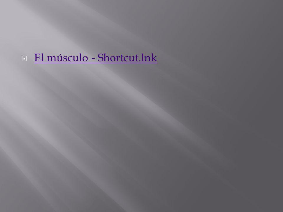 El músculo - Shortcut.lnk