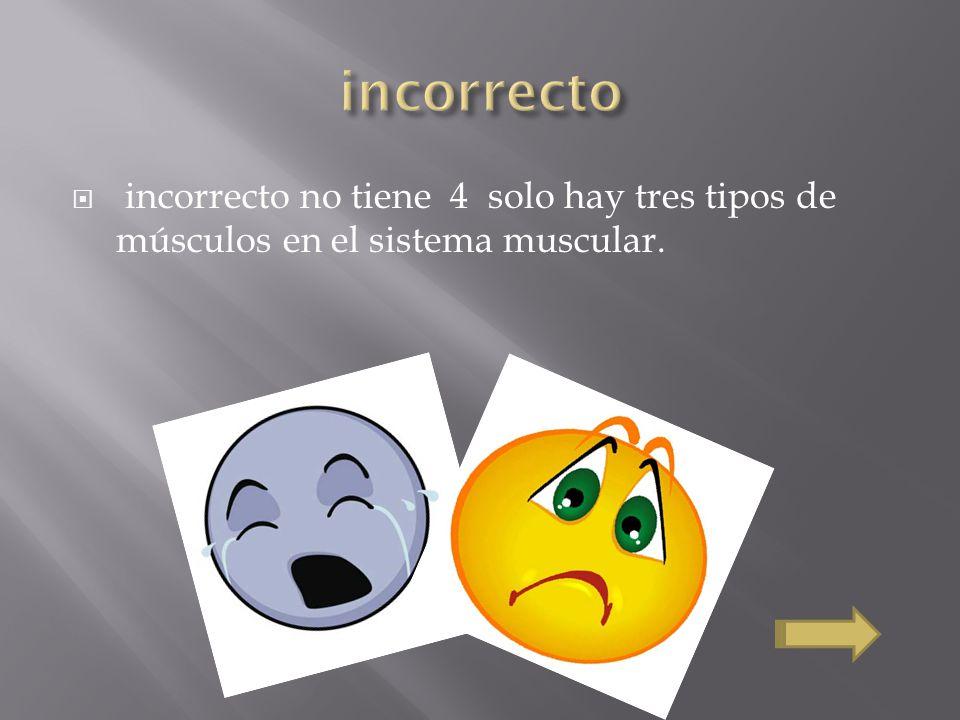incorrecto no tiene 4 solo hay tres tipos de músculos en el sistema muscular.