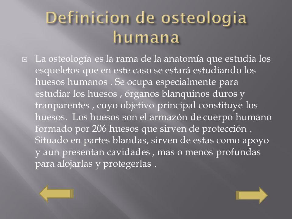 La osteología es la rama de la anatomía que estudia los esqueletos que en este caso se estará estudiando los huesos humanos. Se ocupa especialmente pa