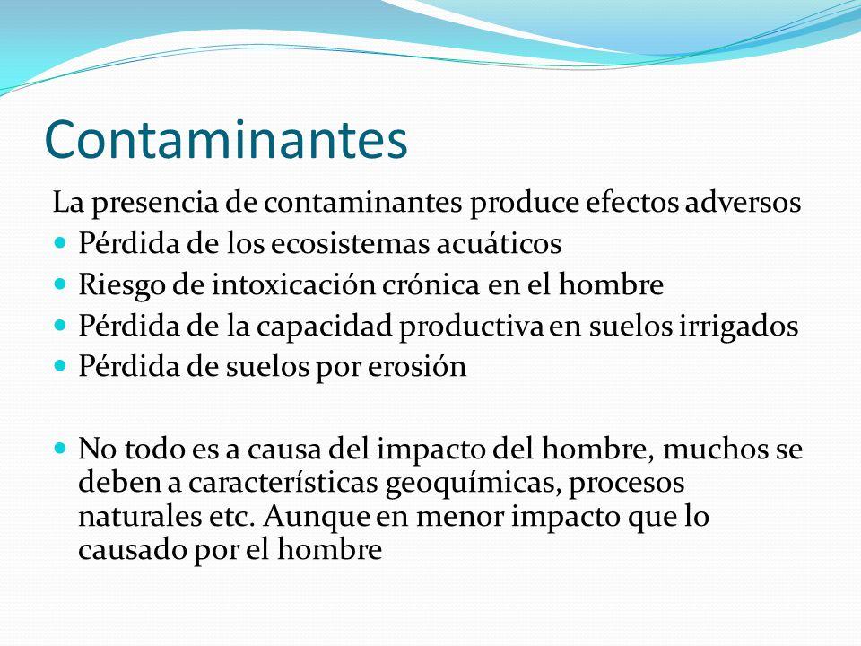 Contaminantes La presencia de contaminantes produce efectos adversos Pérdida de los ecosistemas acuáticos Riesgo de intoxicación crónica en el hombre