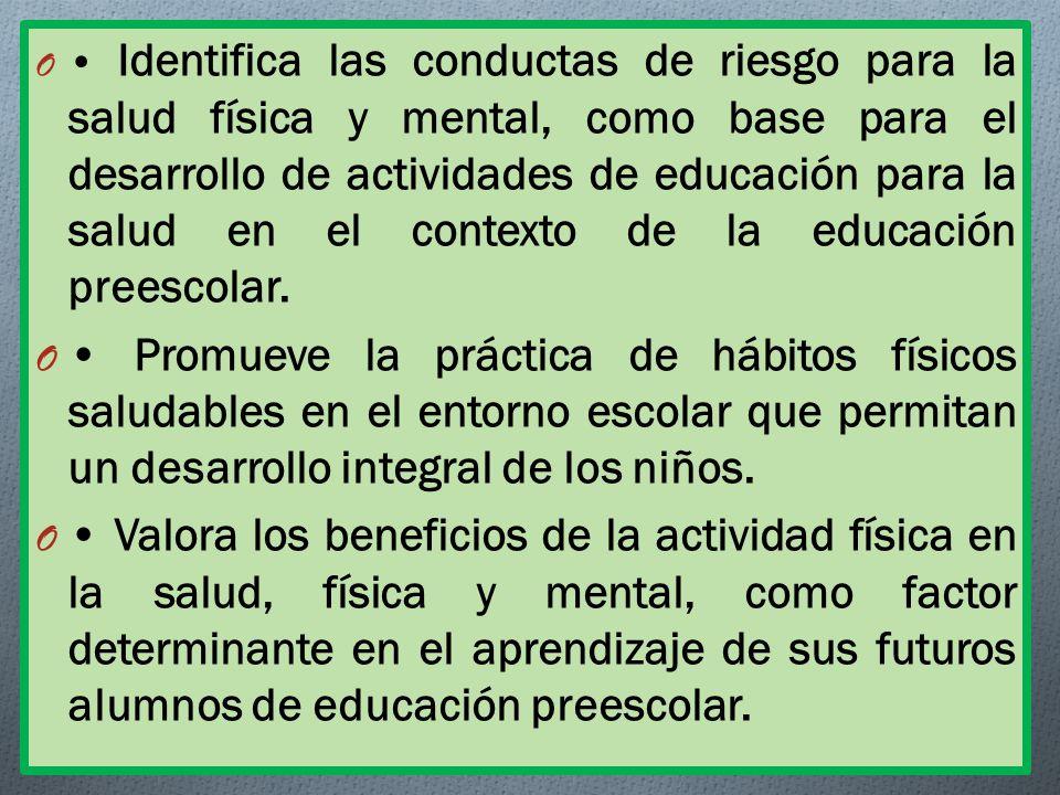 O Identifica las conductas de riesgo para la salud física y mental, como base para el desarrollo de actividades de educación para la salud en el contexto de la educación preescolar.