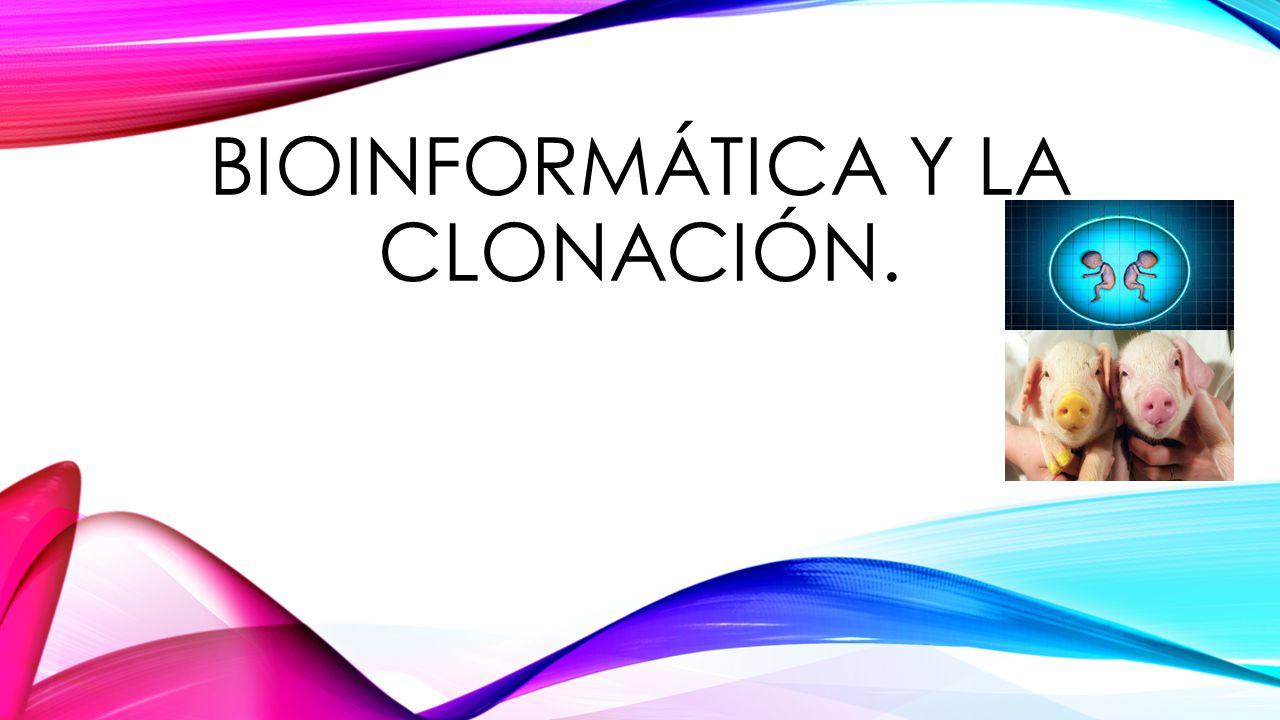 BIOINFORMÁTICA Y LA CLONACIÓN.