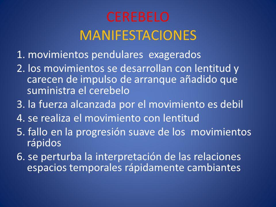 CEREBELO MANIFESTACIONES 1. movimientos pendulares exagerados 2. los movimientos se desarrollan con lentitud y carecen de impulso de arranque añadido