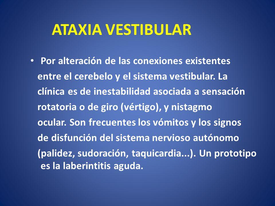 ATAXIA VESTIBULAR Por alteración de las conexiones existentes entre el cerebelo y el sistema vestibular. La clínica es de inestabilidad asociada a sen