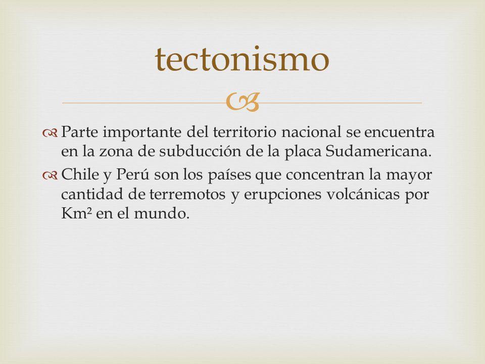Parte importante del territorio nacional se encuentra en la zona de subducción de la placa Sudamericana. Chile y Perú son los países que concentran la