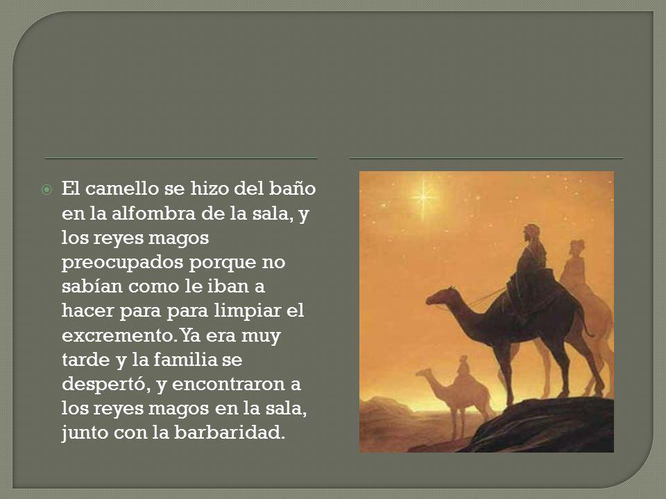 El camello se hizo del baño en la alfombra de la sala, y los reyes magos preocupados porque no sabían como le iban a hacer para para limpiar el excrem