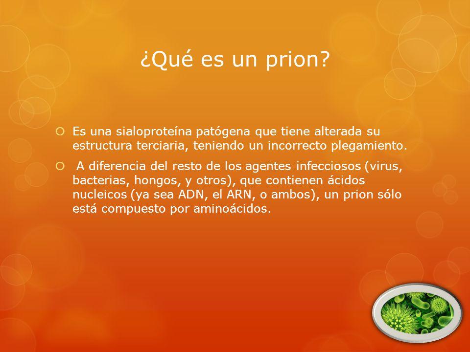 ¿Qué es un prion.