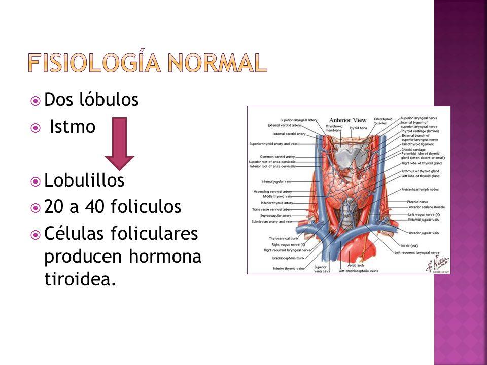 Menos frecuente en embarazo0.05 Causas: 1.Deficiencia de Yodo.