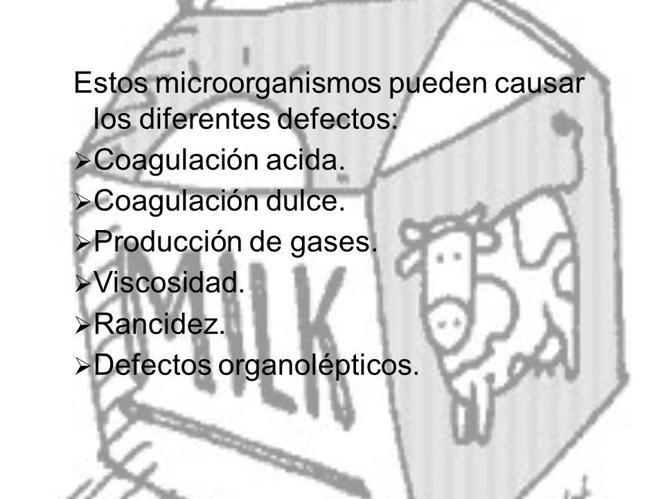 Estos microorganismos pueden causar los diferentes defectos: Coagulación acida. Coagulación dulce. Producción de gases. Viscosidad. Rancidez. Defectos